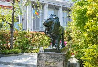 堂々たる風格の「後継の獅子」像(東京・信濃町)。われらは、勇猛果敢に真実を叫ぶ!