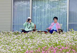 戸田第2代会長と出会い、師弟不二の旅路を開始した8月。小説『新・人間革命』を起稿した8月――カメラを手に、花々に包まれた長野研修道場で語らう池田SGI会長夫妻。道場内の創価信越御書会館で勤行・唱題し、「行学の二道」の金の汗を流す男女青年部をはじめ、全同志の健康と勝利を祈念した