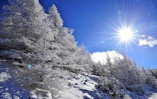 霧氷に覆われた美ケ原高原(長野県松本市)。勝利の春へ!――清新な誓いが自身を輝かせる