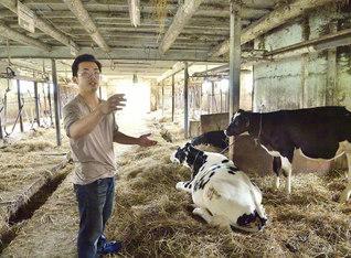 牛舎で被災の状況を語る安藤さん(北海道・日高町で)
