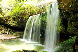 """""""水のカーテン""""のような幻想的な空間が楽しめる「鍋ケ滝」。滝の裏側から水が落ちる様子を眺めることができる(熊本県小国町)=九州支社"""
