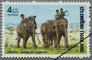 象も観光に一役(1974年)