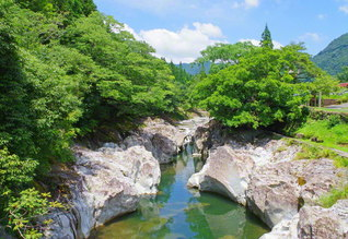 鮮やかな緑と白い岩肌が互いを引き立てる猿飛千壺峡。長い年月をかけ、激しい渓流が造り上げた無数の甌穴が続く(大分県中津市)=大分支局・田中亨一通信員