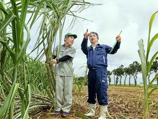 宮古島の土壌は島尻マージ。「水はけが早いため、効果的な灌水が欠かせない」と語る砂川さん㊨。内閣総理大臣賞を受けたこともある島一番のサトウキビ農家の川満長栄さん㊧は、「砂川さんのおかげで今があるんです」と絶大な信頼を寄せる